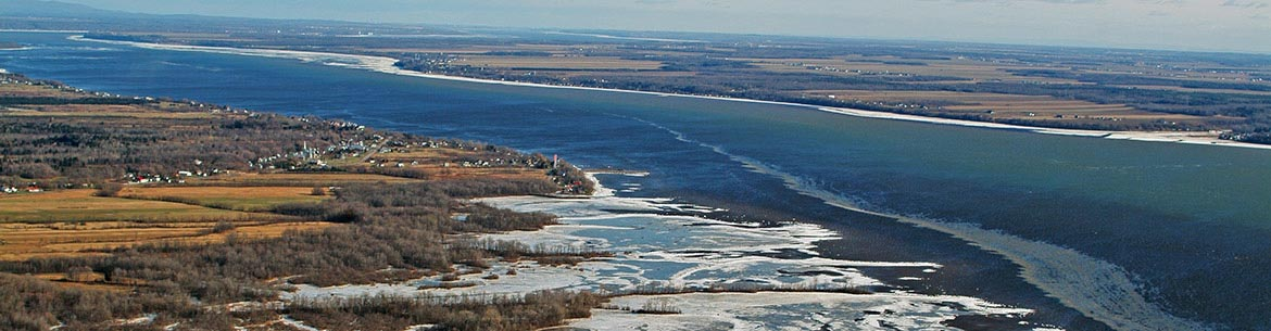 Grondines swamp, freshwater estuary, St. Lawrence River (photo by Claude Duchaîne)