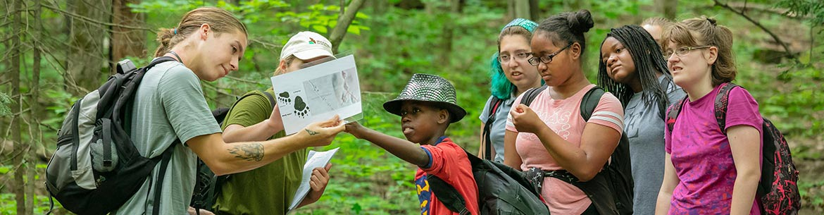 Nature Days, Alfred-Kelly Nature Reserve, Laurentians (Photo by Banque HSBC Canada)