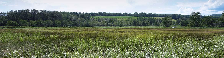 Barachois de la rivière Nouvelle, Baie des Chaleurs, Gaspésie (Photo de CNC)