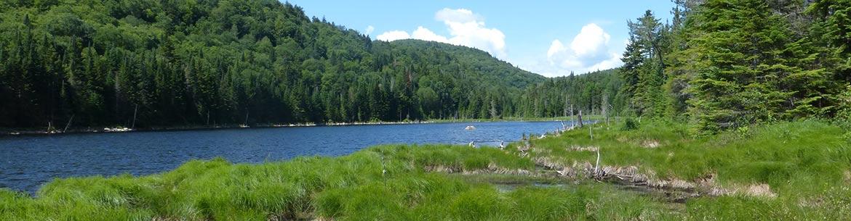 Lac Caché, propriété de la Fondation écologique Barbara Richardson, Laurentides (Photo de CNC)