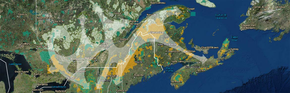 Ecological corridors: A climate change adaptation strategy