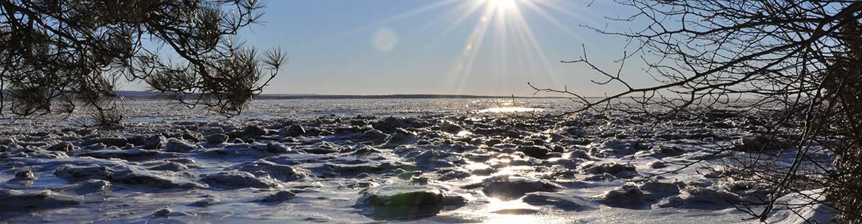 Paysage d'hiver à la réserve naturelle Jean-Paul-Riopelle (Photo de CNC)