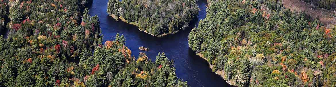 Wetland and forest protected by NCC in Clarendon, Quebec (Photo by Mike Dembeck)