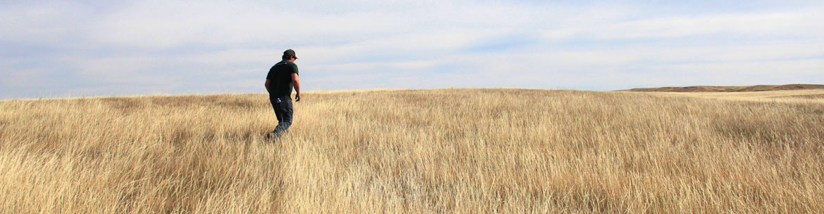 Wideview is in southwest Saskatchewan in the Milk River Basin area. (Photo by NCC)