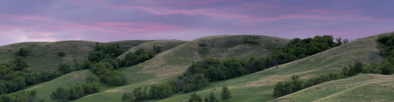 Dundurn property (Photo by Jason Bantle)
