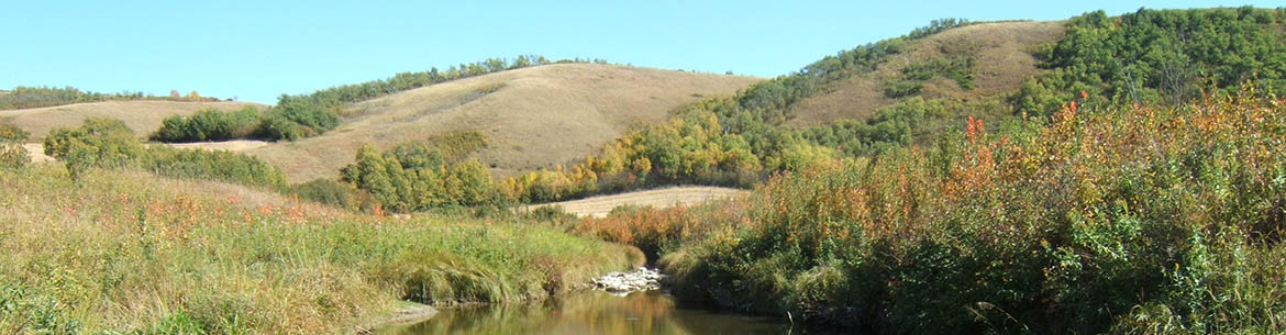 Echo Creek along Qu'Appelle Valley, SK (Photo by NCC)