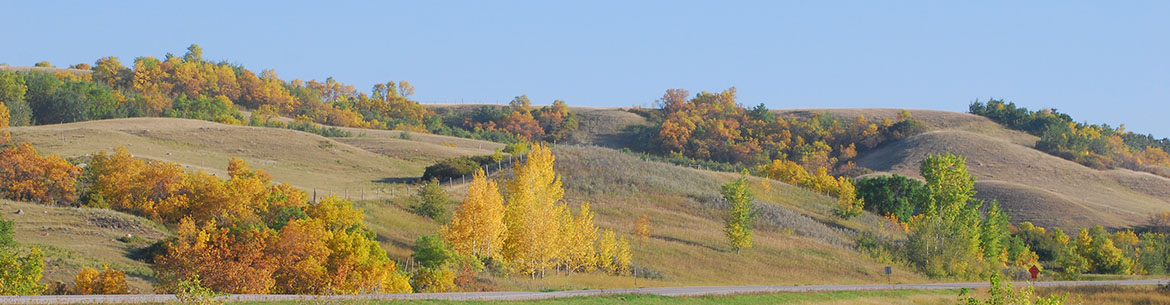 Fairy Hill, SK (Photo by Cherie Westmoreland)
