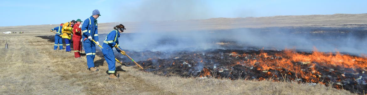 Prescribed burn at Old Man on His Back Prairie and Heritage Conservation Area (Photo by NCC)