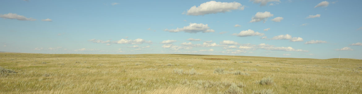 The grasslands at NCC's Old Man on His Back site stretch across the horizon. (Photo by Mark Taylor)