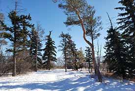 A.E. Wilson Park, SK (Photo by Sarah Ludlow/NCC staff)