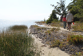 Guided interpretive walk of Singing Sands (Photo by Christine Roberts)