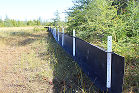 The completed eco-fence (Photo by Christine Roberts)