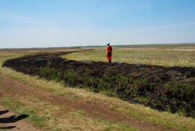 A black line is established before prescribed burn begins. (Photo by NCC)