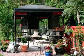 Robert's backyard (Photo by Robert Wrigley)