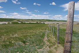 Buffalo Pound property, SK (Photo by Bill Armstrong)