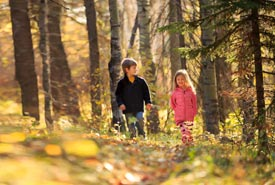 Children walking in the woods, Bunchberry Meadows Conservation Area, AB (Photo by Kyle Marquardt)