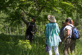 Participants listen in as Todd Farrell talks about the plants in Happy Valley Forest (Photo by Evelyn Senyi)