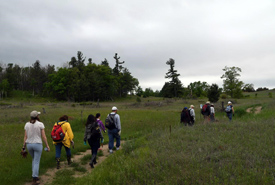 Team hike to the planting area (Photo by Robert Britton)