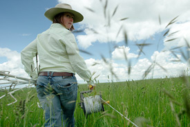Julia Palmer is one of the ranchers working with the NCC in Waterton. The dense, lush, waist high, grass on her ranch is a testament to her stewardship on the land. (Photo by Ann Tipper and Zach Melnick)