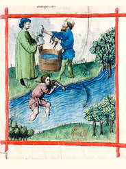 Medieval European depiction of fishing for lamprey from <i>Tacuinum Sanitatis</i>, 15th century (Illustration from Wikimedia Commons)