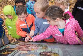 Children discovering facts about the Happy Valley Forest (Photo by HSBC Bank Canada)