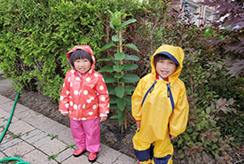Common milkweed grew from a short plant to one taller than my daughters, in fewer than two months! (Photo by Wendy Ho/NCC staff)
