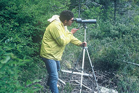 A spotting scope helped me identify food items fed to loon chicks by their parents. (Photo by Bob Manson)