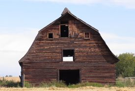 An old, abandoned barn along the road that leads to NCC's Coyote Lake and surrounding properties. It reminded me of my roots filled with youthful hope and life's lessons while growing up on the farm (Photo by Denise Harris)