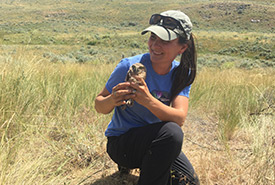 Sheena Briggs helping out at a burrowing owl reintroduction site at BC's Sage and Sparrow Conservation Area in 2017 (Photo by NCC)