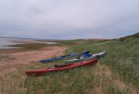 The Conway Sandhills, Prince Edward Island. (Photo by Joanna Hudgins)
