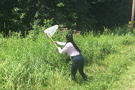 Me catching butterflies during the butterfly count Conservation Volunteers event at Carden Alvar, ON (Photo by NCC)