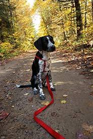 Winona's first hike (Photo by Samanta Cava)