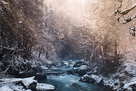 A stream with snow-covered banks (Photo by Shayd Johnson, Unsplash)