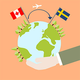 Plane flying from Canada to Sweden (Graphic by Samanta Hoffmann)