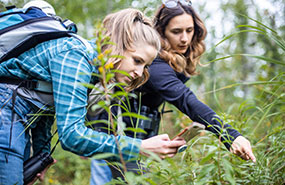 Volunteer and NCC staff identify a plant during a bioblitz in Alberta (Photo by Brent Calver)