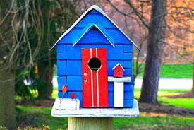 Birdhouse (Photo by Kamir, Wikimedia Commons)