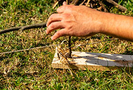 To light your fire with a bow drill, find a plank of pine wood, a straight pointy stick, a curved stick and a piece of string (a shoelace will work). (Photo by Scouts Canada)