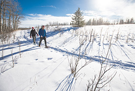 A winter hike on the Bunchberry Meadows property (Photo by Brent Calver)