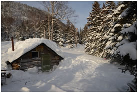 Cabin at the Grassy Place, NL (Photo by John Gosse)