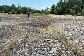 A particularly exposed section of the Camden East Alvar, an NCC property just west of Kingston, Ontario. (Photo by NCC)