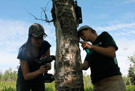 Camera traps being set up. (Photo by NCC)