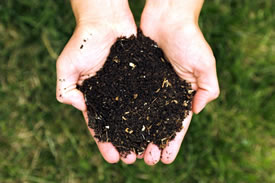 Compost (Photo by Kessner Photography, Wikimedia Commons)