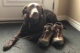 Craig's dog, Chelsey (Photo by Craig Doucette/NCC staff)