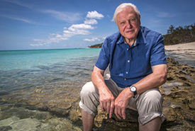 David Attenborough (Photo by the Department of Foreign Affairs and Trade website/CC BY-NC)