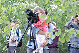 Curiosity for nature can be fostered at a young age (Photo by NCC)