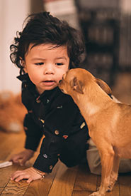 Baby and dog (Photo by Ricardo Esquivel from Pexels)