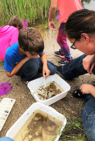 Local biologist Dorthea Gregoire joined Stephanie and Tyra in helping the campers identify local species. (Photo by NCC)