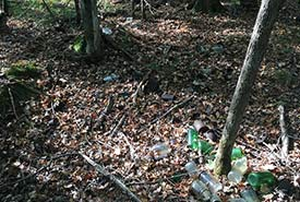 Dump site with bottles and cans (Photo by NCC)