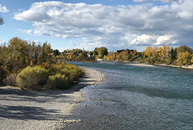 Early fall along the Bow River (Photo by Gayle Roodman/NCC staff)