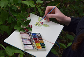 Painting with watercolour (Photo by Emma Dunlop/NCC)